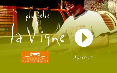 Plus Belle La Vigne #13 : Le Pressoir