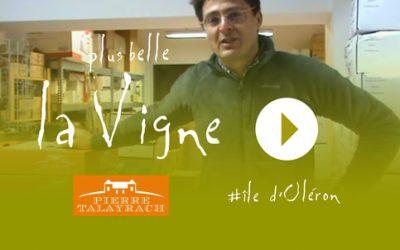 Plus Belle La Vigne #23 : Ravitaillement de l'île d'Oléron